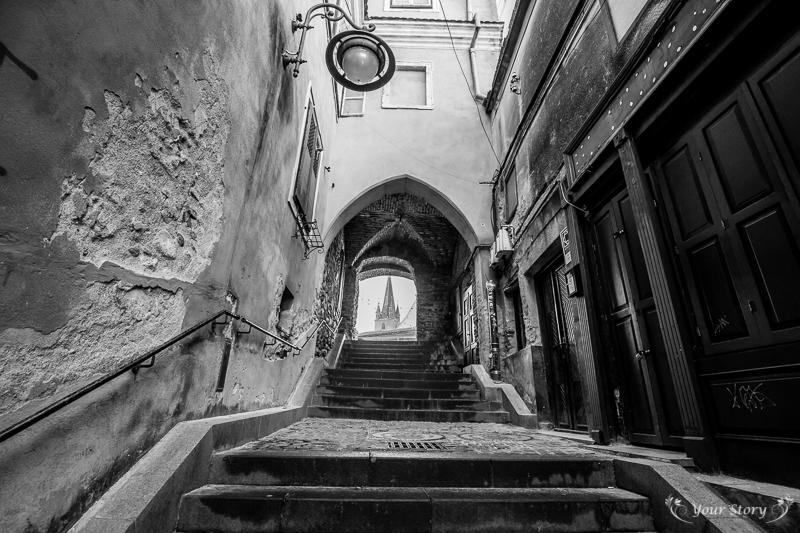 proiecte-expozitii_Your-Story-Sibiu-0066